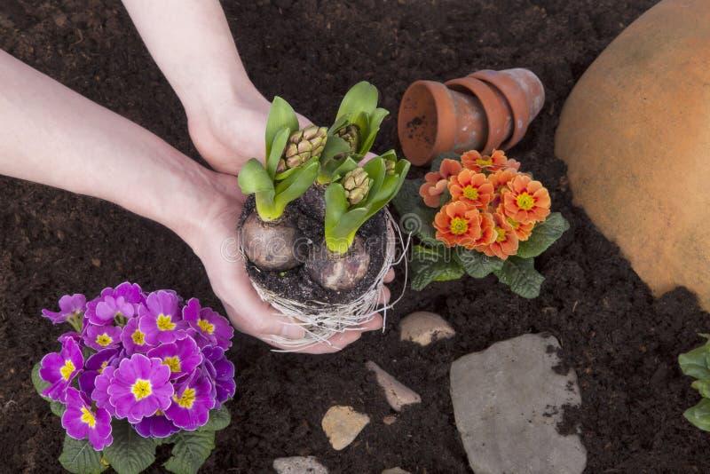 Trabalho do jardim fotografia de stock royalty free