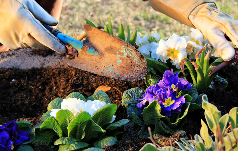 Trabalho do jardim ao ar livre imagens de stock royalty free