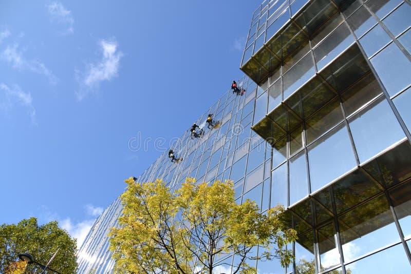 Trabalho em equipe - limpadores de janelas no trabalho fotografia de stock royalty free