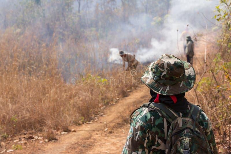 Trabalho que extingue incêndios florestais imagem de stock royalty free