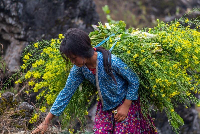 Trabalhos infanteis Vietname da minoria étnica de Hmong imagem de stock royalty free