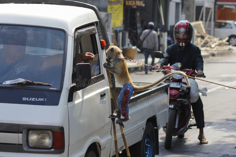 Trabalhos sujos nas ruas
