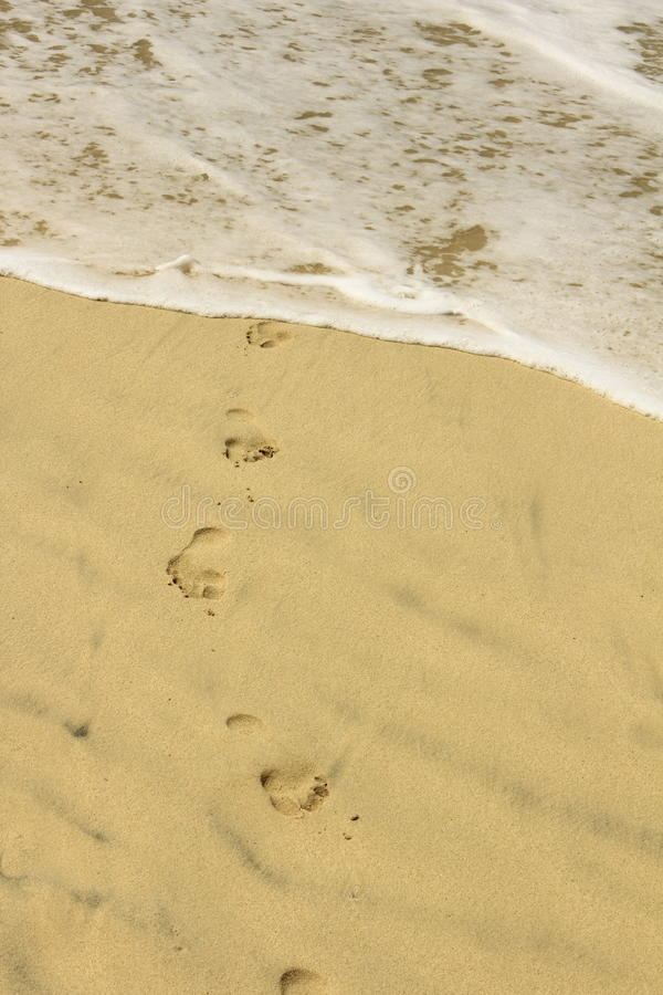 tracce del mare immagini stock libere da diritti
