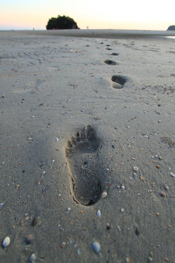 Tracce dell'essere umano sulla sabbia fotografie stock libere da diritti