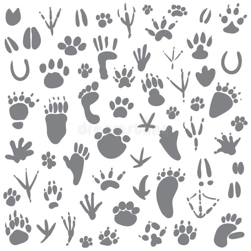 Tracce di animali illustrazione di stock