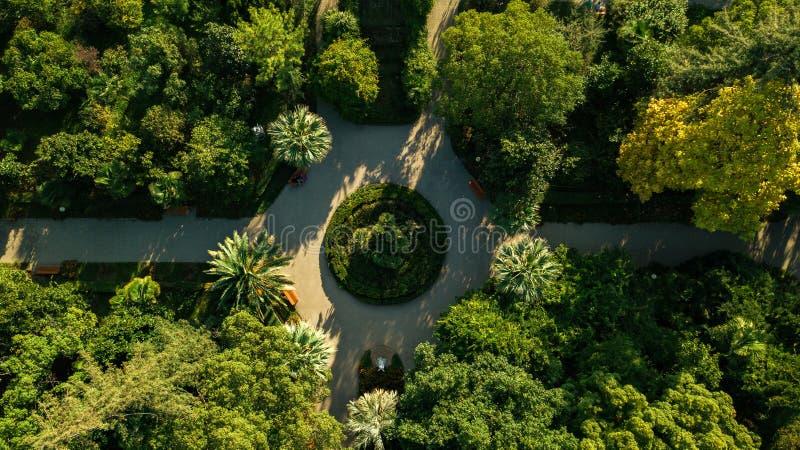 Tracce nel parco, vista superiore Parco in nuovo Athos L'Abkhazia georgia immagine stock