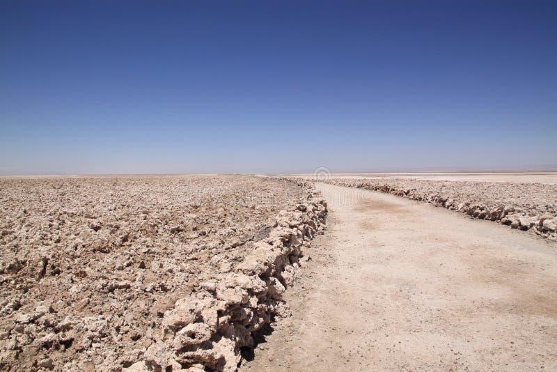 Traccia attraverso Salar de Atacama, Cile fotografia stock