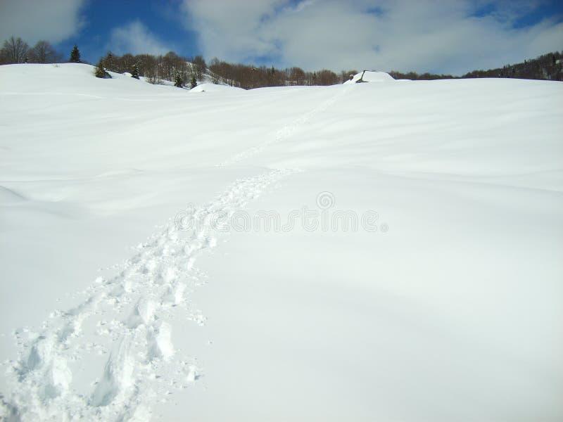 Traccia dei punti del piede sulla coperta di neve immagini stock libere da diritti
