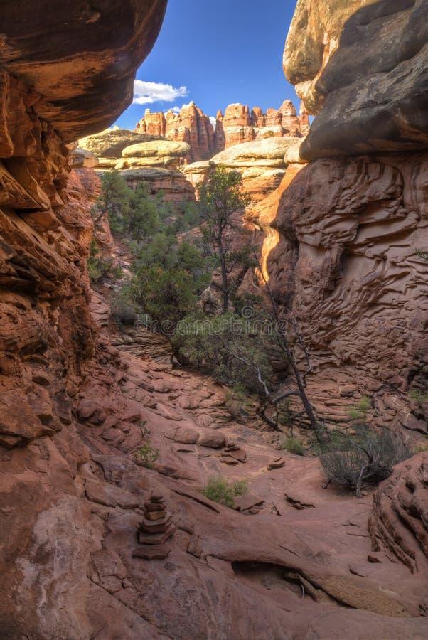 Traccia del canyon dell'elefante al parco di Chesler fotografie stock libere da diritti