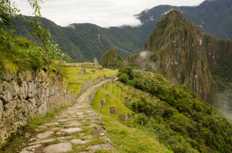 Traccia del Inca a Machu Picchu fotografia stock libera da diritti