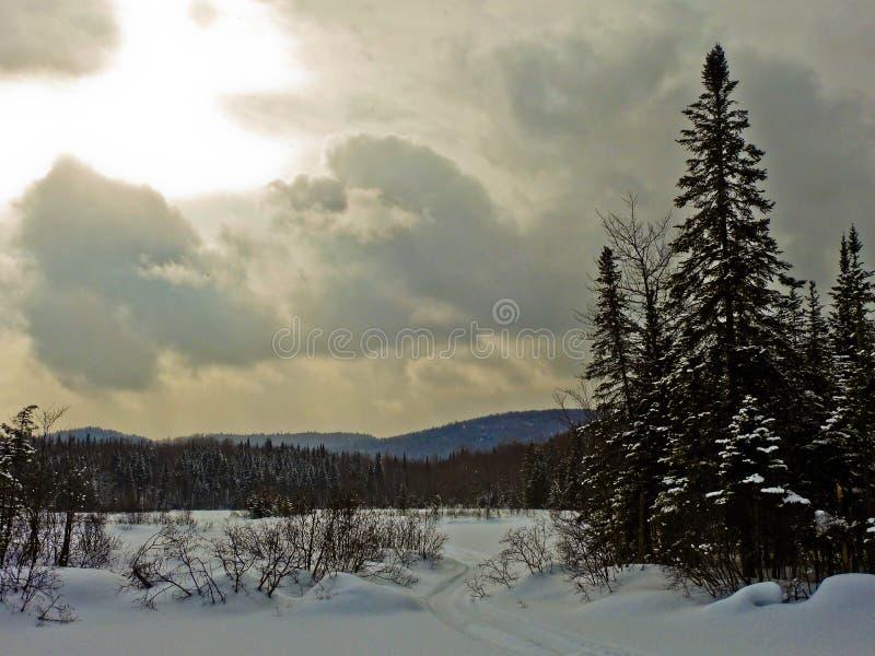 Traccia del marzo del gelo fotografia stock