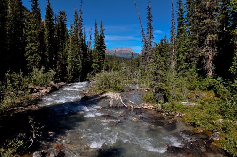 Traccia del passaggio del tempio nel parco nazionale di Banff, Alberta, Canada fotografia stock
