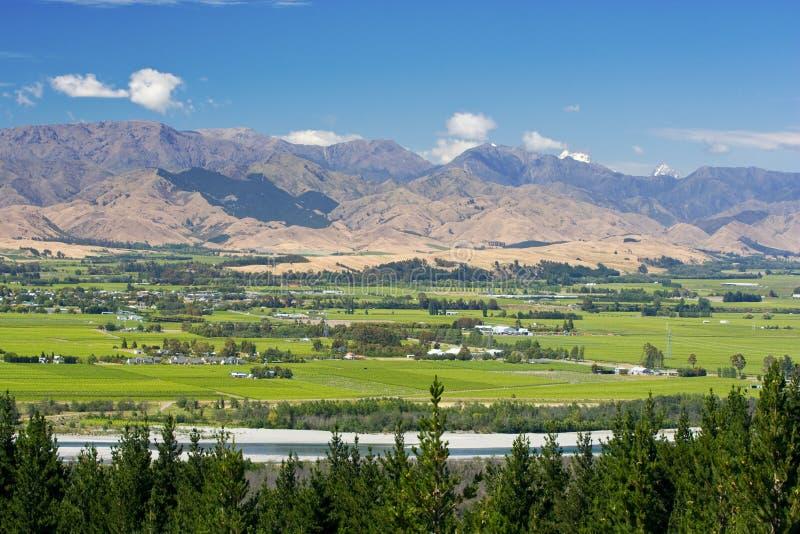 Traccia del vino di Marlborough immagini stock