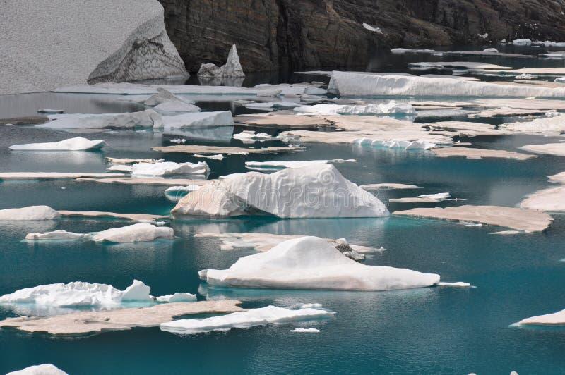 Traccia dell'iceberg in Glacier National Park, Montana, U.S.A. immagine stock