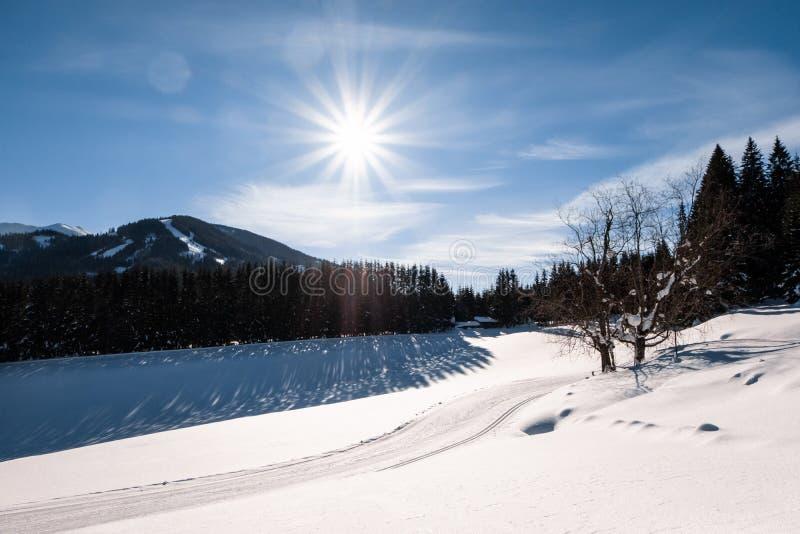 Traccia della pista di sci di fondo nel centro di villeggiatura innevato soleggiato Hohentauern immagini stock