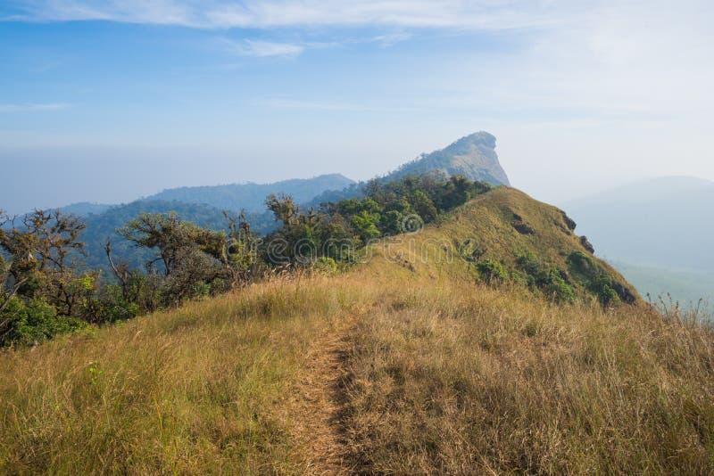 Traccia di camminata dell'itinerario di trekking del paesaggio della montagna al parco nazionale di punta del paesaggio della mon fotografia stock libera da diritti
