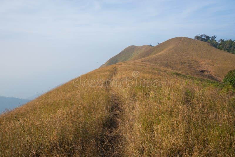 Traccia di camminata dell'itinerario di trekking del paesaggio della montagna al parco nazionale di punta del paesaggio della mon fotografie stock