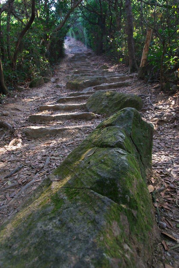 Download Traccia di escursione immagine stock. Immagine di intestazione - 7324119