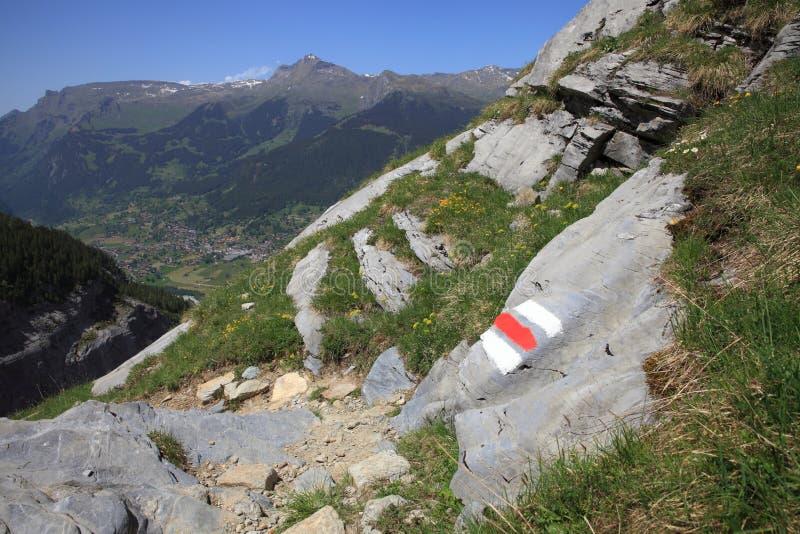 Traccia di escursione alpina fotografia stock libera da diritti