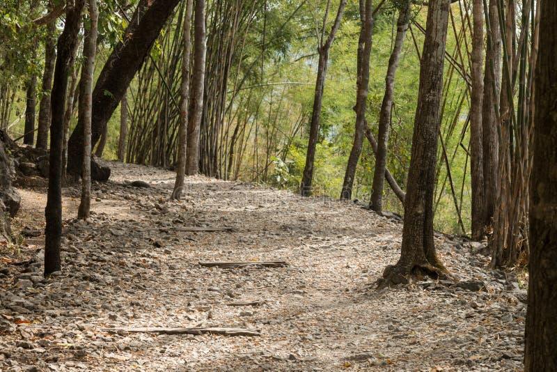 Traccia di escursione del passaggio di pene dell'inferno sulla Birmania rinomata alla ferrovia di morte della Tailandia fotografia stock libera da diritti