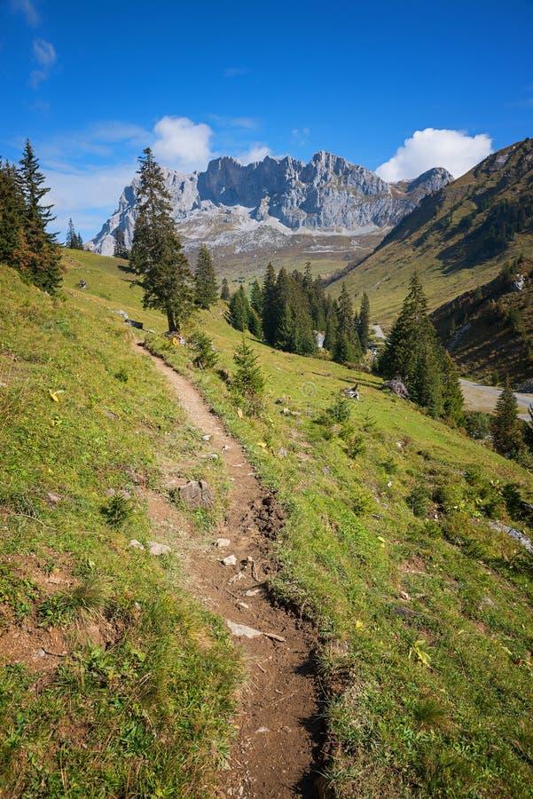 Traccia di escursione nelle alpi svizzere immagini stock