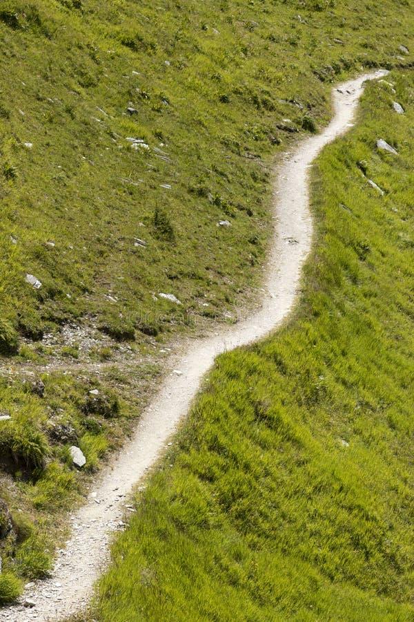 Traccia di escursione nelle alpi svizzere, Grigioni, Svizzera immagine stock