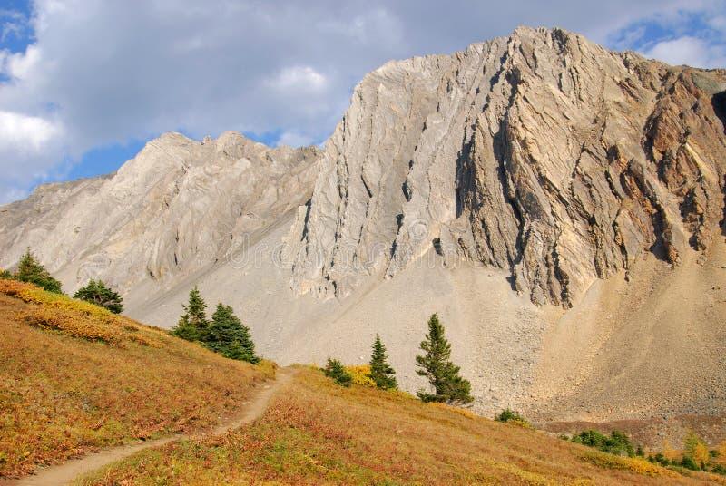 Download Traccia Di Escursione In Prato Alpino Fotografia Stock - Immagine di canadese, caduta: 7319838