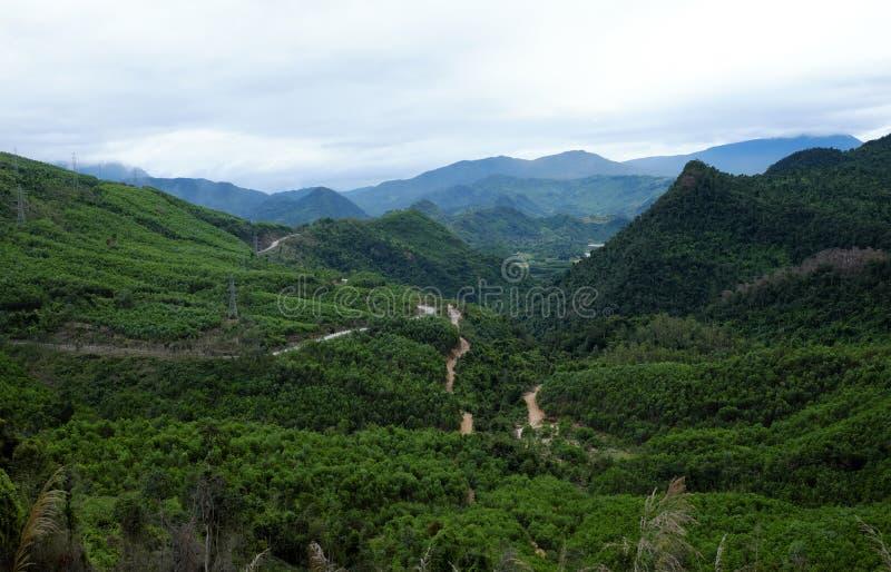 Traccia di Ho Chi Minh, foresta, montagna, terreno immagine stock libera da diritti