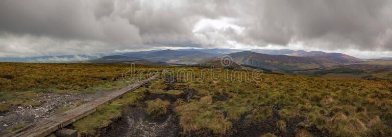Traccia di modo di Wicklow che conduce al paesaggio irlandese vibrante di panorama fotografia stock