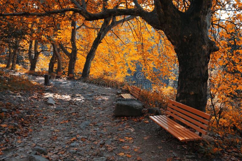 Traccia di montagna di autunno immagini stock libere da diritti