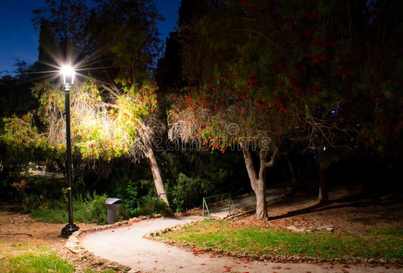 Traccia di notte fotografia stock libera da diritti