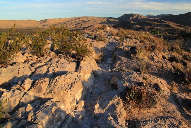 Traccia di Rio Grande Village Campground Nature di mattina fotografia stock