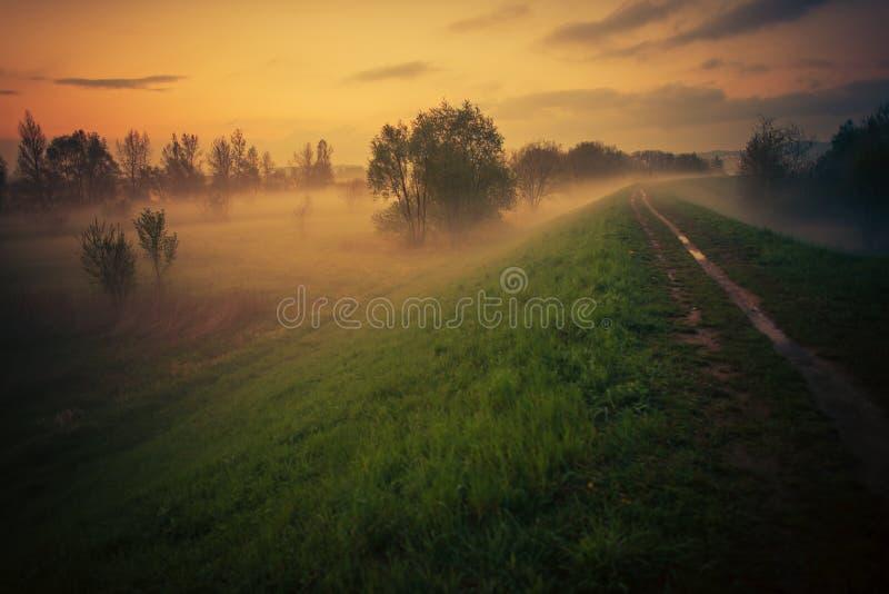 Traccia nebbiosa di Floodbank al tramonto fotografia stock libera da diritti