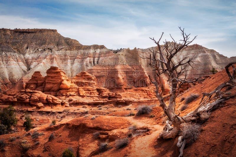 Traccia pittoresca attraverso il parco di stato del bacino di Kodachrome fotografie stock libere da diritti