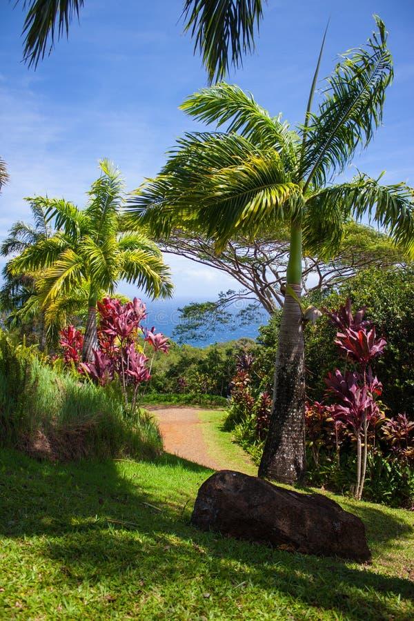 Traccia scenica al giardino di Eden Arboretum fotografie stock