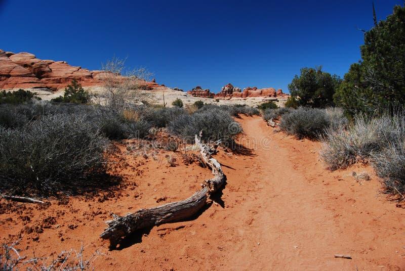 Traccia scenica del deserto fotografia stock