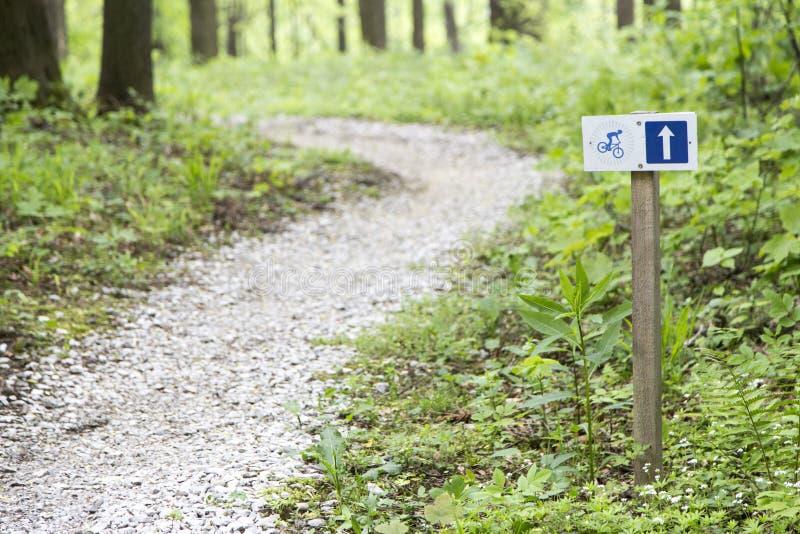 Traccia vuota della bici in foresta immagini stock