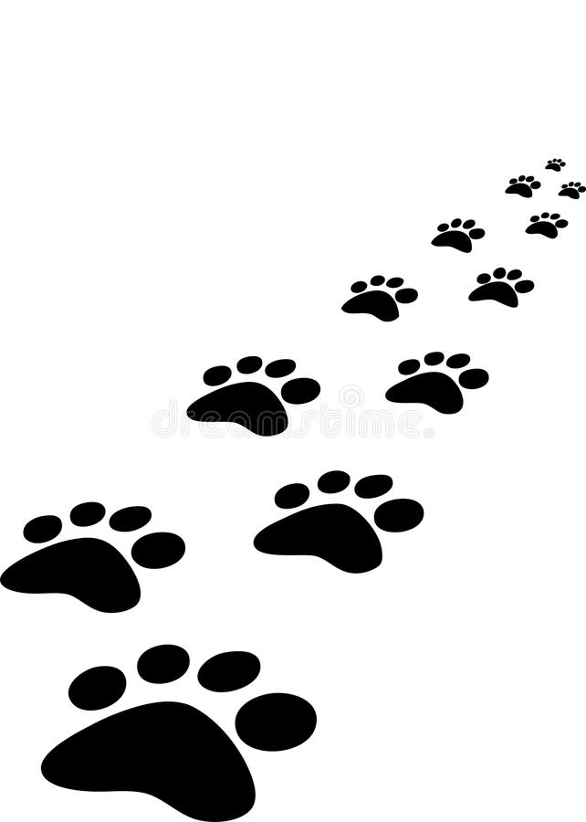 Trace of dogs. Seen in perspective stock illustration