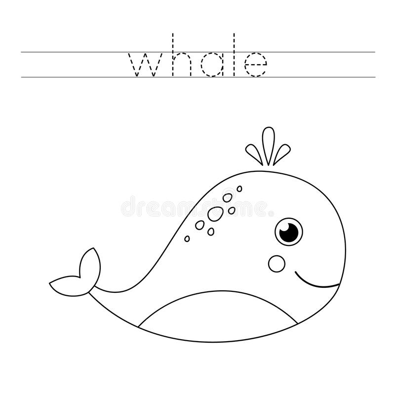 whale trace)