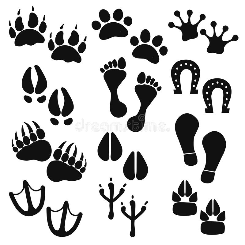 Traces of animals, birds, people royalty free stock photos