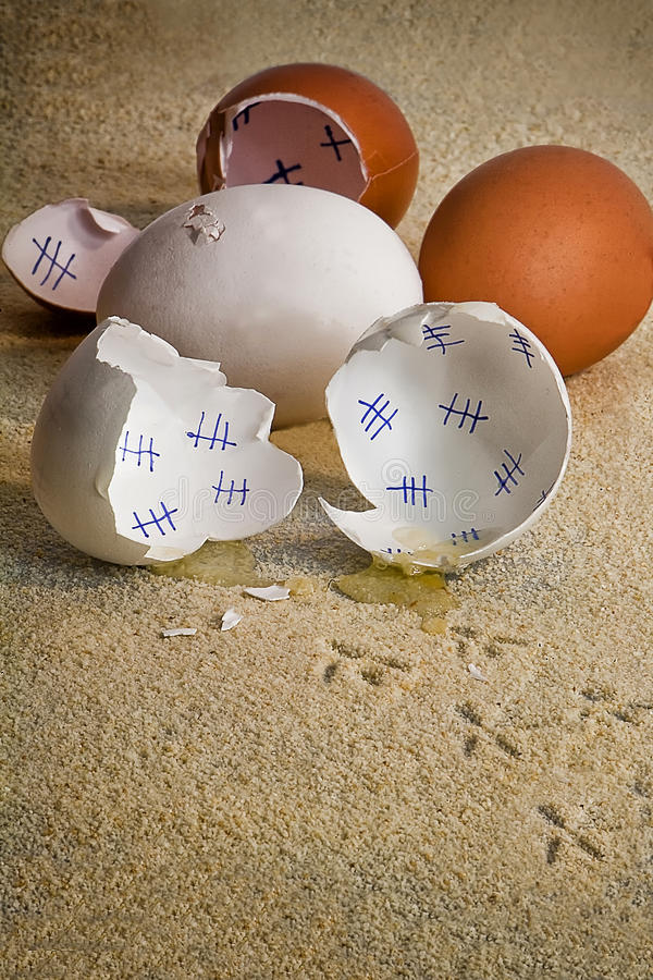 Traces of bird, a chick has just come out of its shell. Concept stock photo
