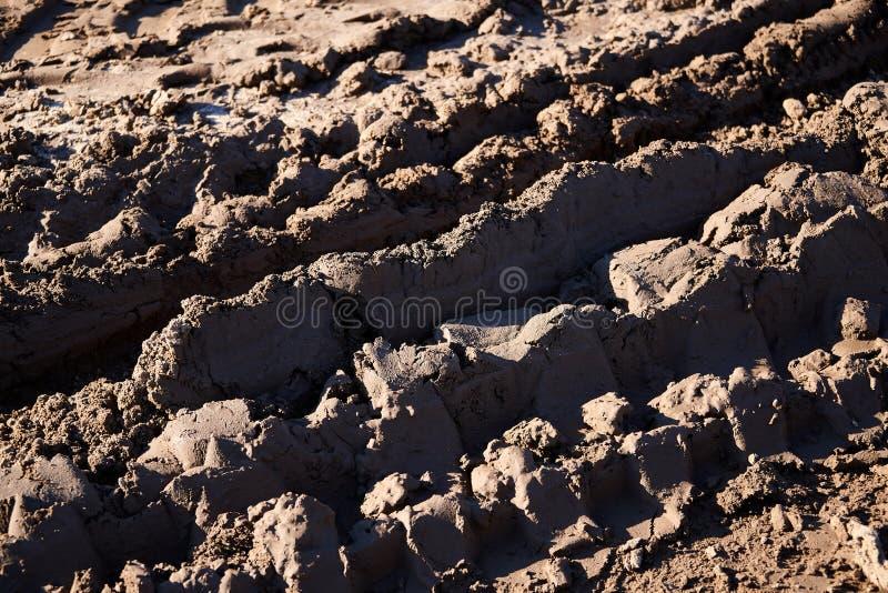 traces dans la boue photo libre de droits