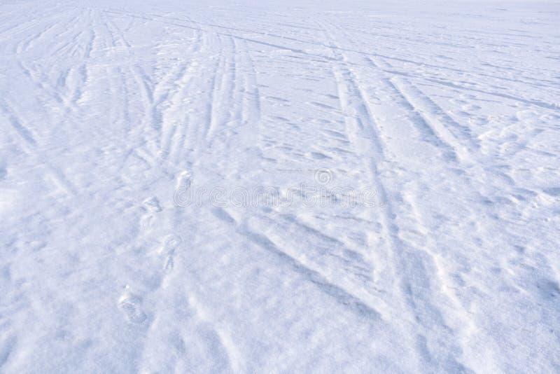 Traces des coureurs et du ski de traîneau sur la neige fraîchement tombée de blanc images libres de droits
