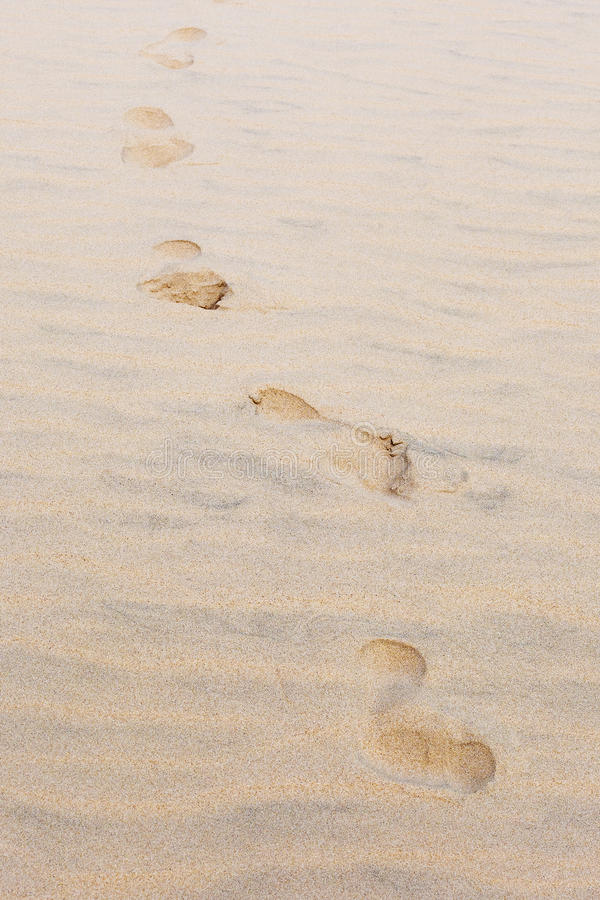 Traces of man walking towards sand. Traces of man walking towards golden sand at sunset stock images
