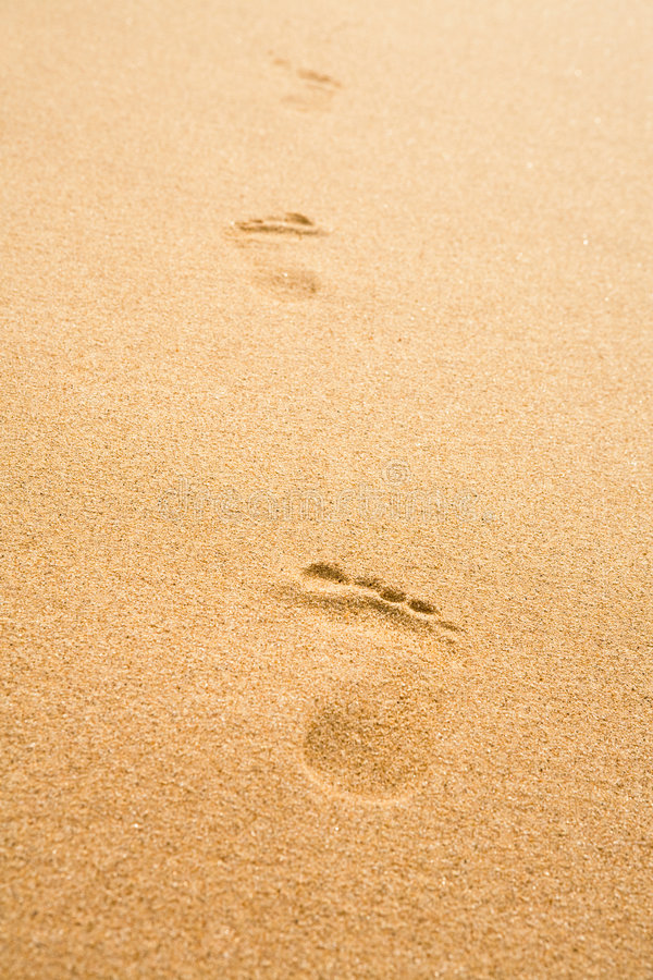 Free Traces On Sand Stock Images - 4911144