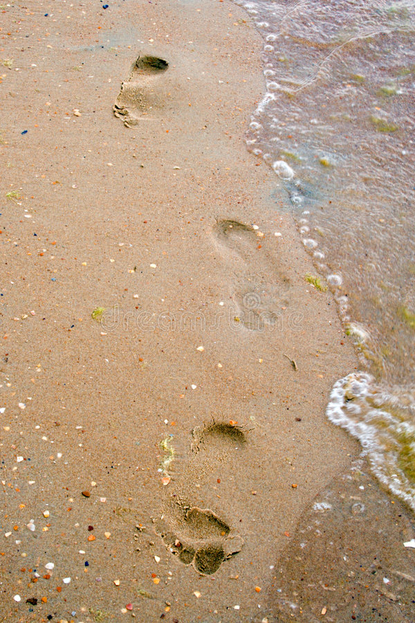 Free Traces On Sand Royalty Free Stock Images - 5462459