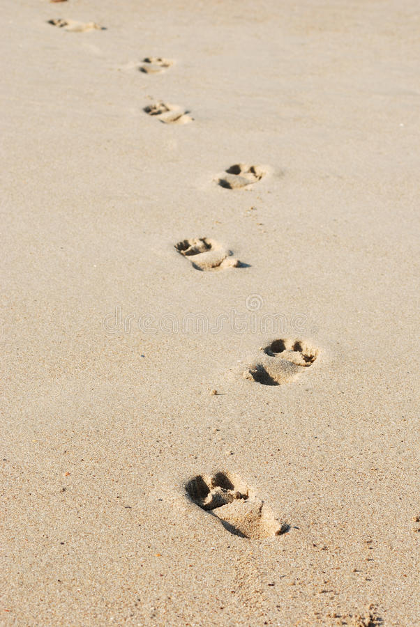 Traces On Sand Royalty Free Stock Photography