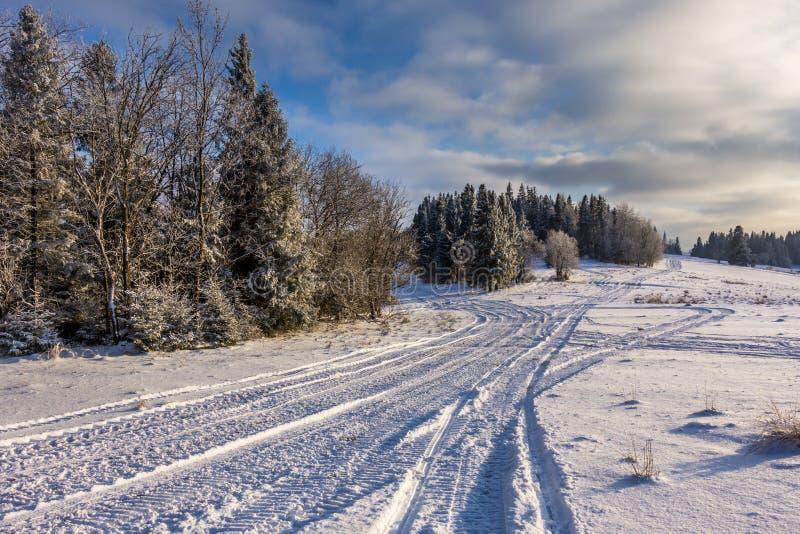 Traces sur la neige photo libre de droits
