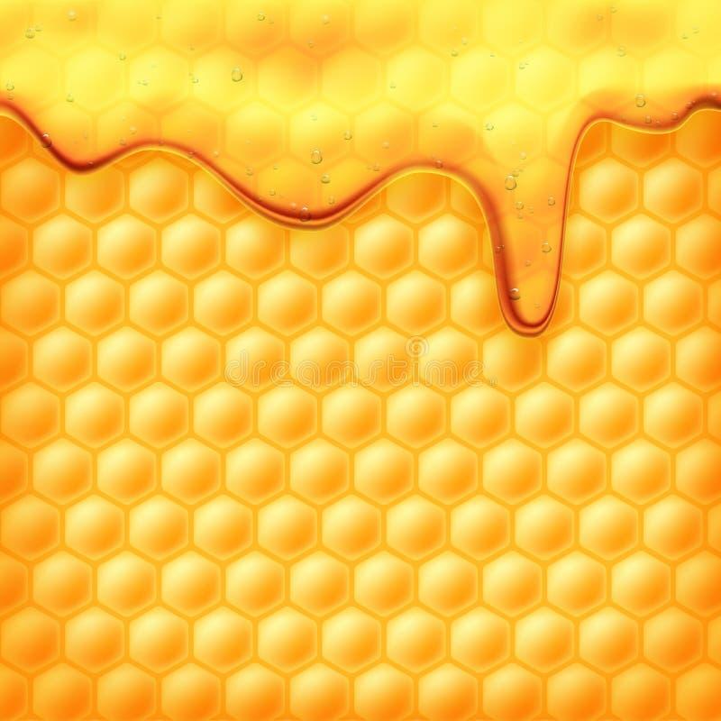 Trachten auf Bienenwaben vektor abbildung