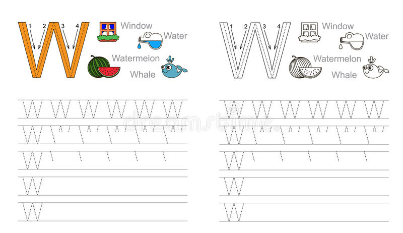 Tracing worksheet for letter W stock images